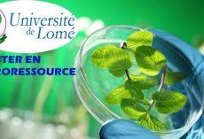 L'Université de Lomé lance le Master en agroressource